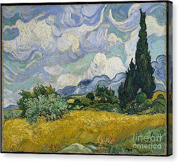 Wheat Field With Cypresses Canvas Print by Celestial Images