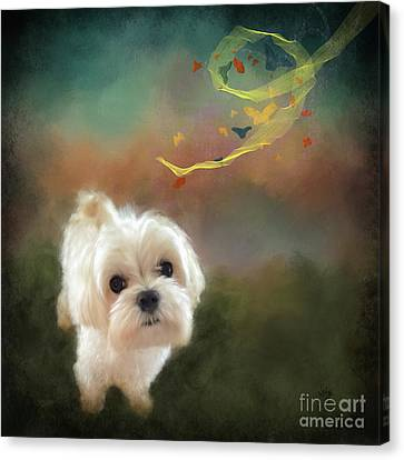 When Puppies Get Confused Canvas Print by Lois Bryan