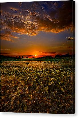 When Time Stood Still Canvas Print by Phil Koch
