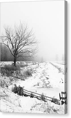 When Winter Comes Canvas Print by Cathy  Beharriell