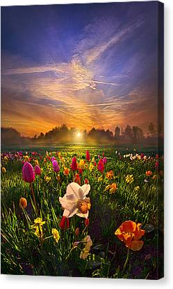 Wherever The Journey Takes Us Canvas Print by Phil Koch