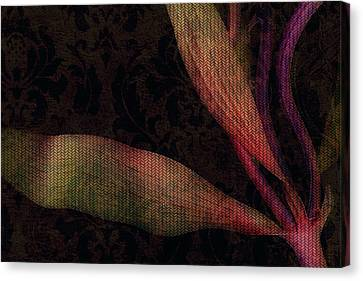 While The Flowers Slept Canvas Print by Bonnie Bruno