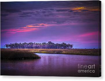 Whispering Wind Canvas Print by Marvin Spates