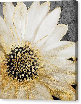 White And Gold Daisy Canvas Print by Mindy Sommers
