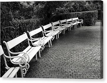 White Benches-  By Linda Wood Woods Canvas Print by Linda Woods