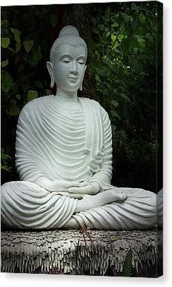 White Buddha Canvas Print by Honey Bee