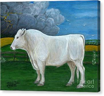 White Bull Canvas Print by Anna Folkartanna Maciejewska-Dyba