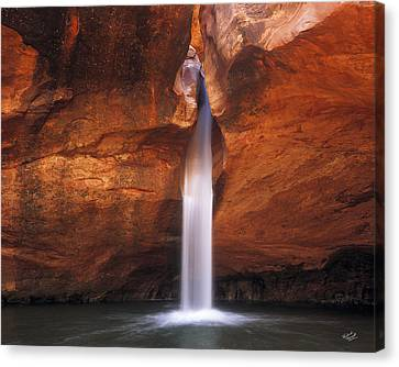 White Canyons Canvas Print by Leland D Howard