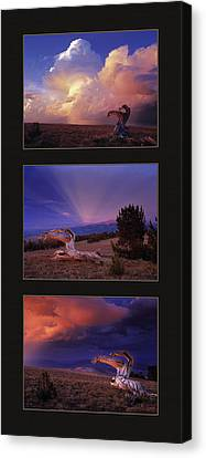 White Clouds Triptych Canvas Print by Leland D Howard
