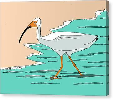 White Ibis Canvas Print by Joan Mansson