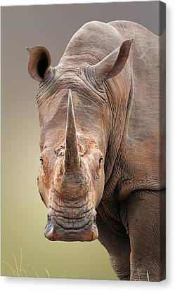 White Rhinoceros Portrait Canvas Print by Johan Swanepoel
