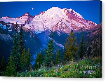 White River Predawn Canvas Print by Inge Johnsson