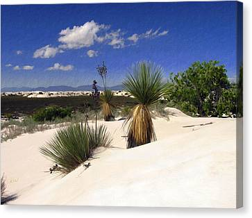 White Sands Canvas Print by Kurt Van Wagner