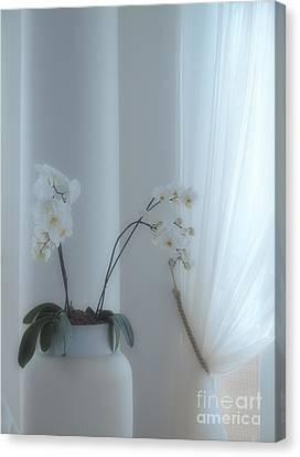 White Series Soft Canvas Print by Joyce Hutchinson