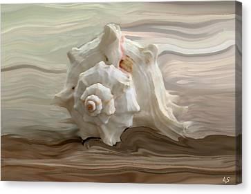 White Shell Canvas Print by Linda Sannuti