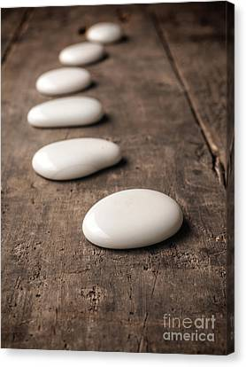 White Stones On Wood Canvas Print by Andreas Berheide