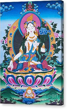 White Tara Thangka Canvas Print by Tim Gainey