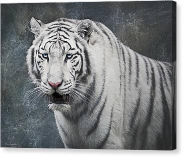 White Tiger Canvas Print by Wim Lanclus