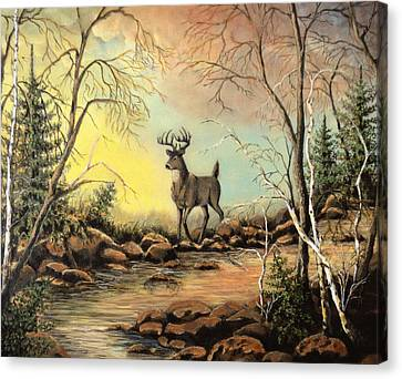 Whitetail Buck Creek Canvas Print by Kimberly Benedict