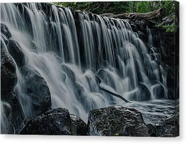 Whitnall Park Pond Over The Edge Canvas Print by Dale Kauzlaric