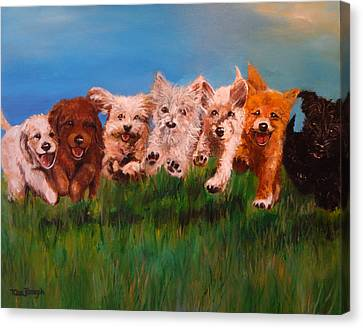 Who Let The Dogs Out Canvas Print by Terry Cox Joseph