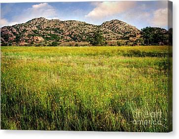 Wichita Mountain Wildflowers Canvas Print by Tamyra Ayles