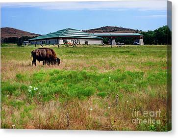 Wichita Mountain Wildlife Reserve Welcome Center I Canvas Print by Tamyra Ayles