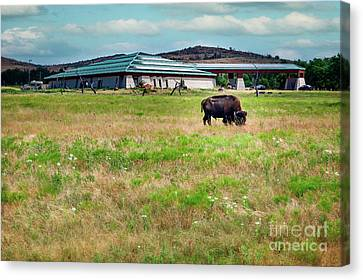 Wichita Mountain Wildlife Reserve Welcome Center II Canvas Print by Tamyra Ayles