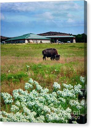 Wichita Mountain Wildlife Reserve Welcome Center Verticle Canvas Print by Tamyra Ayles