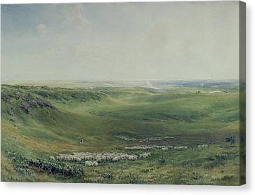 Wide Pastures Canvas Print by Thomas Collier
