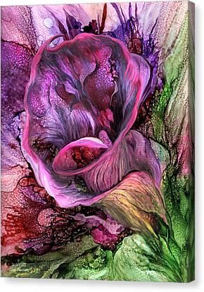 Wild Calla Canvas Print by Carol Cavalaris