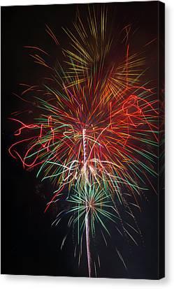 Wild Fireworks Canvas Print by Garry Gay