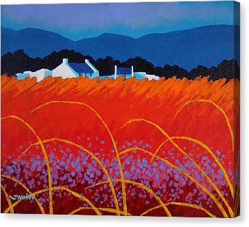 Wild Flowers County Wicklow Canvas Print by John  Nolan