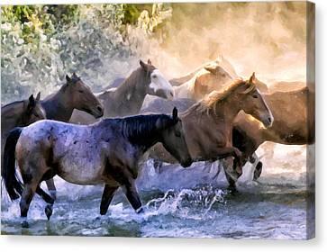 Wild Herd Canvas Print by Janet Fikar