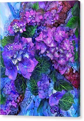 Wild Hydrangeas Canvas Print by Carol Cavalaris