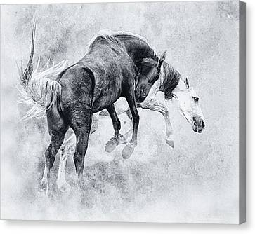Wild Ones Canvas Print by Ron  McGinnis