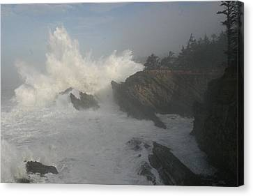 Wild Oregon Coast Canvas Print by James Thompson