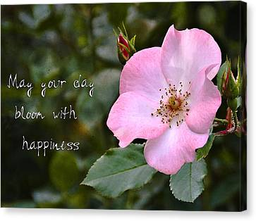 Wild Rose With Quote Canvas Print by Marion McCristall