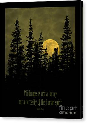 Wilderness Is Not A Luxury Canvas Print by John Stephens