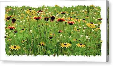 Wildflower Meadow Canvas Print by JQ Licensing