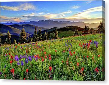 Wildflower Sunset Hill Canvas Print by Scott Mahon