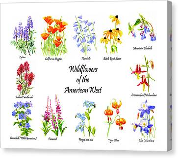 Wildflowers Of The American West Poster Canvas Print by Sharon Freeman