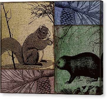 Wildlife Patchwork Squirrel Canvas Print by Mindy Sommers