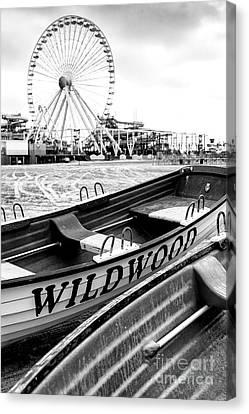 Wildwood Black Canvas Print by John Rizzuto