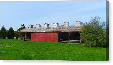 Williams Corncrib Canvas Print by Julie Dant