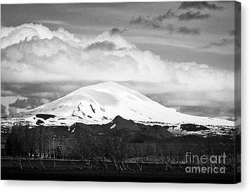 wind blown trees in fields beneath snow covered hekla stratavolcano Iceland Canvas Print by Joe Fox