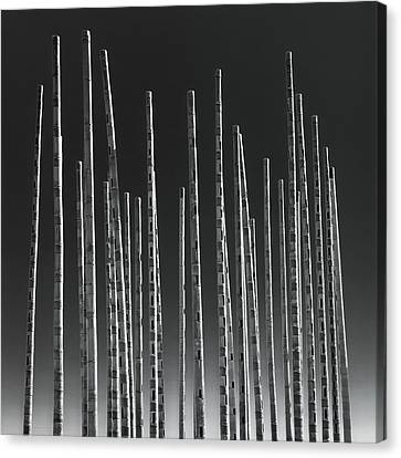 Wind Organ Canvas Print by Wim Lanclus