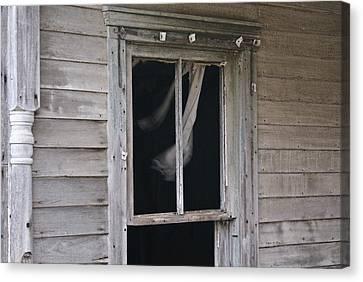 Wind Throught My Window Canvas Print by Douglas Barnett