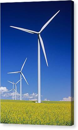 Wind Turbines In Canola Field, Near St Canvas Print by Dave Reede