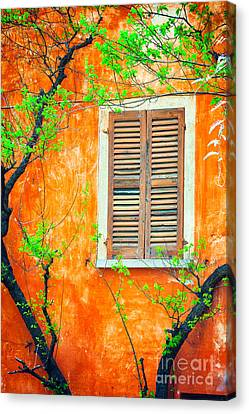 Window And Tree Canvas Print by Silvia Ganora